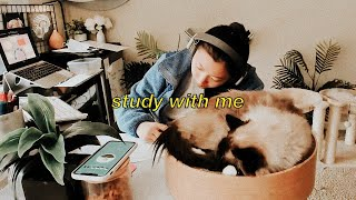 Caturday STUDY WITH ME LIVE for 12 HOURS