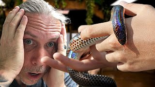 WHY YOU SHOULD NOT KEEP REPTILES!!! | BRIAN BARCZYK