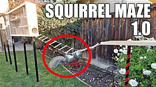 Building the Perfect Squirrel Proof Bird Feeder