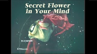 Secret Flower in Your Mind